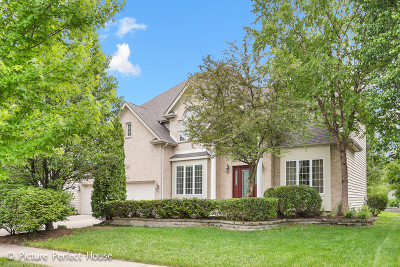 Naperville Single Family Home For Sale: 2628 Charlestowne Lane
