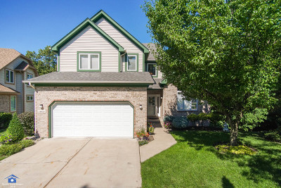 Homer Glen Single Family Home New: 14439 South Provencal Drive