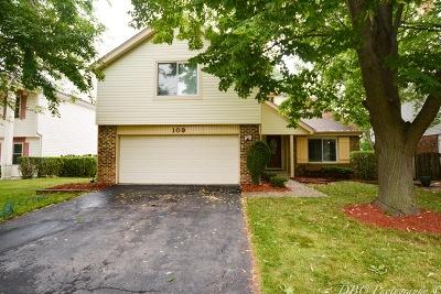 Buffalo Grove Single Family Home New: 109 Horatio Boulevard