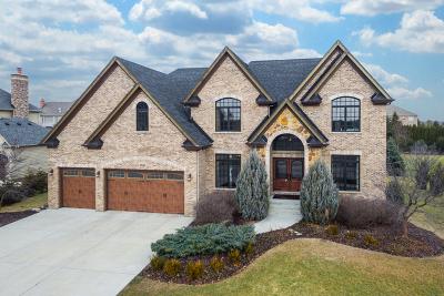 Naperville IL Single Family Home New: $749,900