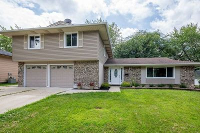 Schaumburg Single Family Home New: 1137 Perth Drive