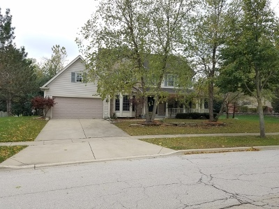 West Chicago  Single Family Home For Sale: 510 Nagel Court