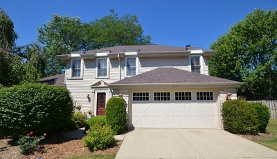 Libertyville Single Family Home For Sale: 713 Roosevelt Drive