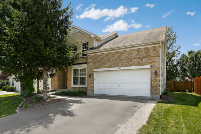 Plainfield Single Family Home New: 7222 Courtwright Drive