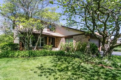 Northbrook Single Family Home New: 4125 Applewood Lane