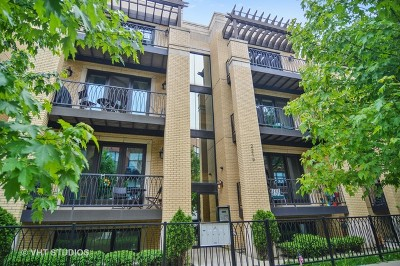 Condo/Townhouse For Sale: 2219 West Wabansia Avenue #1W