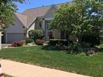 Aurora Single Family Home For Sale: 3143 Wild Meadow Lane