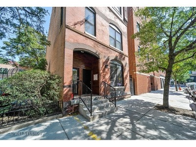 Chicago Condo/Townhouse New: 11 North Carpenter Street #3