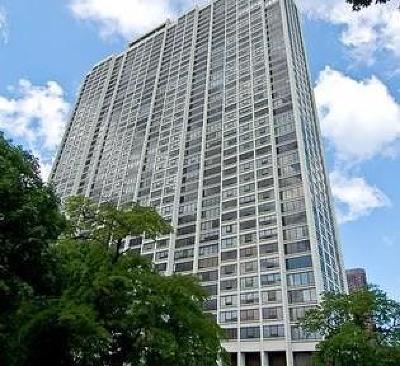 Chicago Condo/Townhouse New: 2800 North Lake Shore Drive #1702