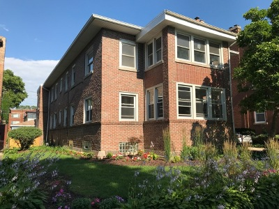Chicago Multi Family Home New: 6926 South Chappel Avenue