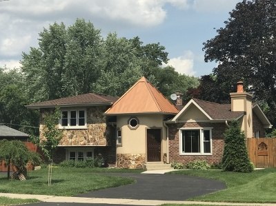 Palatine Single Family Home New: 139 South Rohlwing Road