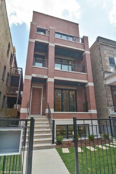 Chicago Condo/Townhouse New: 3855 North Damen Avenue #3