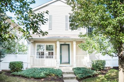 Romeoville Single Family Home New: 145 Mountain Laurel Court