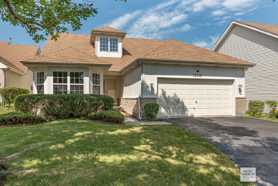 Plainfield Single Family Home New: 13430 Tall Pines Lane East