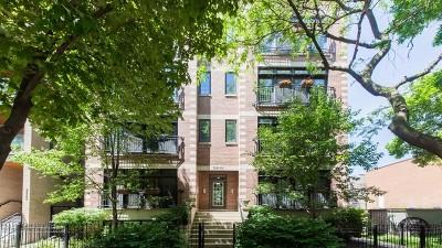 Chicago Condo/Townhouse New: 3546 North Reta Avenue #4S