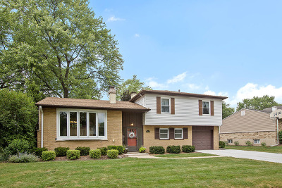 Palatine Single Family Home New: 1418 East Joan Drive