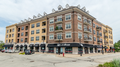 Palatine Condo/Townhouse New: 24 West Station Street #307W