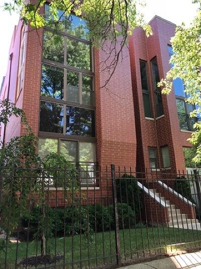 Chicago Condo/Townhouse New: 1647 North Artesian Avenue #1