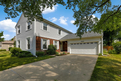 Schaumburg Single Family Home For Sale: 2208 Romm Court