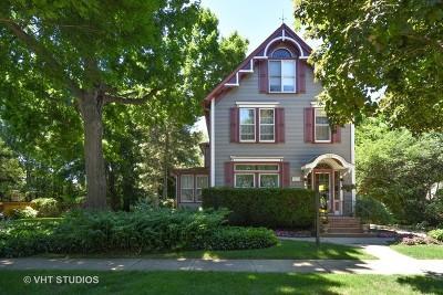 Palatine Single Family Home New: 223 West Slade Street