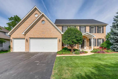 Naperville Single Family Home New: 3003 Tall Grass Drive