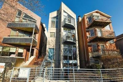 Chicago Condo/Townhouse New: 1356 West Hubbard Street #2