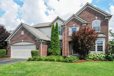 Plainfield Single Family Home New: 12517 Blue Iris Lane