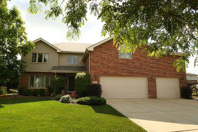 Mokena Single Family Home New: 19427 Newport Drive