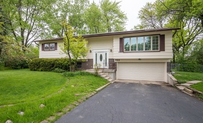 Arlington Heights Single Family Home New: 322 West Hackberry Drive