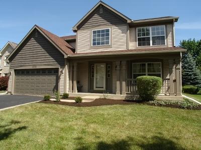 Single Family Home New: 1372 Burnett Drive