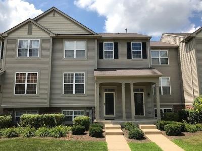 Grayslake Condo/Townhouse New: 750 Cherry Creek Drive