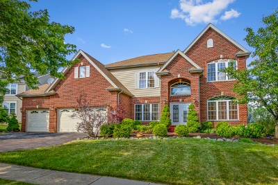 Hoffman Estates Single Family Home New: 2085 Morningview Drive