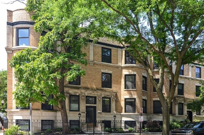 Chicago Condo/Townhouse New: 2002 North Howe Street #2N