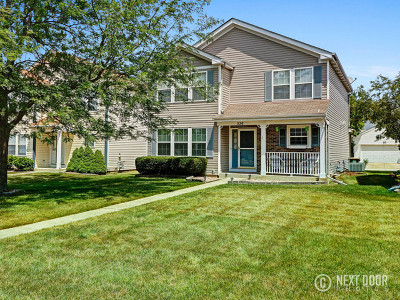 Oswego Single Family Home New: 328 Ogden Falls Boulevard