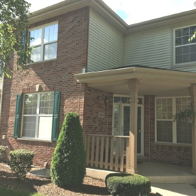 Tinley Park Condo/Townhouse New: 18543 Dearborn Court #4