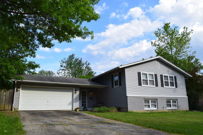 Woodridge Single Family Home New: 6101 Ridgeway Drive