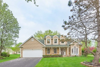 Buffalo Grove Single Family Home New: 31 Dellmont Court