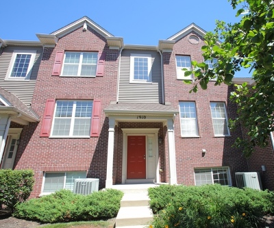 Naperville Condo/Townhouse New: 1910 Oxley Circle