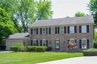 Northbrook Single Family Home New: 3025 Margo Lane