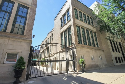 Chicago Condo/Townhouse New: 1152 North La Salle Drive #D