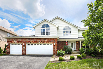 Lockport Single Family Home For Sale: 16427 West Ash Lane