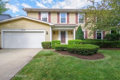 Buffalo Grove Single Family Home New: 770 Dunhill Drive