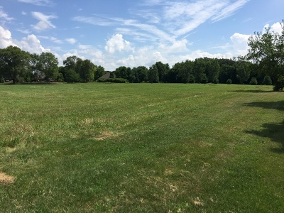 Channahon Residential Lots & Land For Sale: Lot 3 South Ford Road