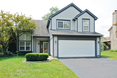 Bolingbrook Single Family Home New: 983 Pennwood Lane