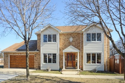 Chicago Single Family Home New: 6810 West Talcott Avenue