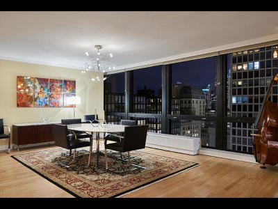 Chicago Condo/Townhouse New: 900 North Lake Shore Drive #2902