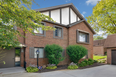 Palos Heights, Palos Hills Condo/Townhouse New: 50 Parliament Drive West #50