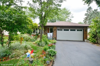 Downers Grove Single Family Home New: 3938 Elm Street
