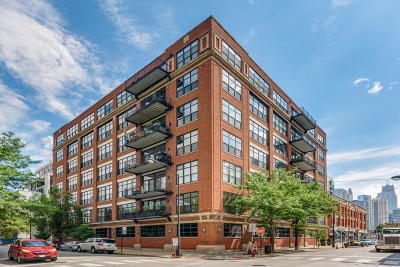 Chicago Condo/Townhouse New: 850 West Adams Street #2B