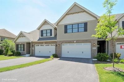 Naperville Condo/Townhouse For Sale: 655 Bourbon Lane